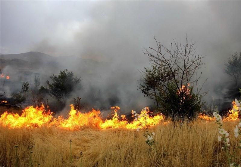 ملکی در تبادل نظر با خبرنگاران اطلاع داد؛ آتش سوزی گسترده در مراتع خشک شمال شرق تهران