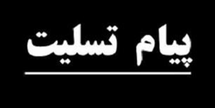 وزیر علوم درگذشت سیدمحمد کاظم نائینی را تسلیت گفت