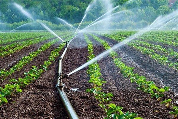 آفت کش زیستی برای توسعه کشاورزی سالم فراوری شد