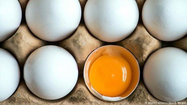 تداوم گرانی تخم مرغ علیرغم تشدید نظارت ها