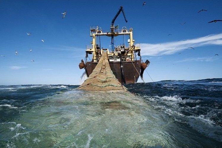 آیا صید ترال ممنوع شده است؟