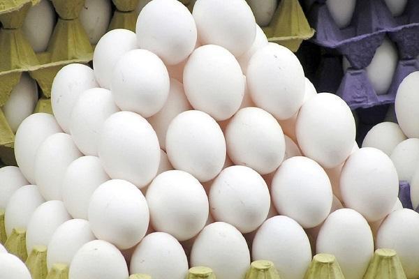 پوست تخم مرغ، گنج خوراکی که ندانسته دور می ریزیم